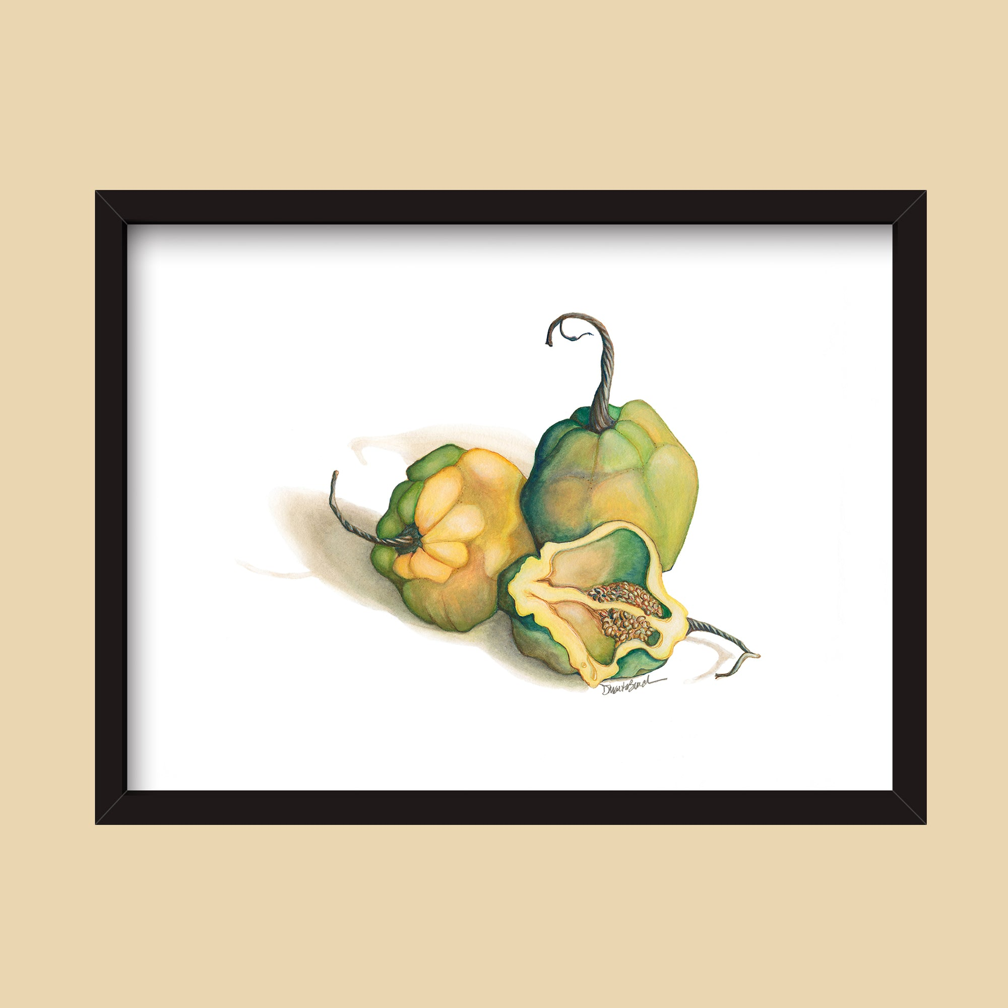 Habanero Peppers | Watercolor Painting by Denise Marta-Burch