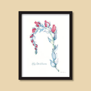 Holy Gate Echeveria | Watercolor Painting by Denise Marta-Burch