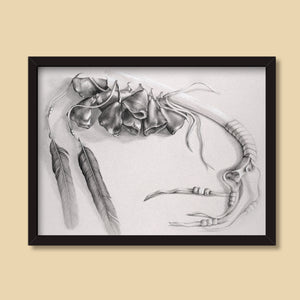 Medicine Rattle | Drawing by Denise Marta-Burch