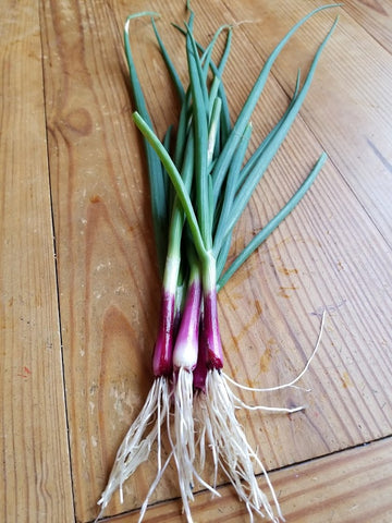 Red Onions  bunch