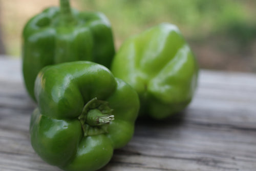 Green Bell Pepper- 1 ct