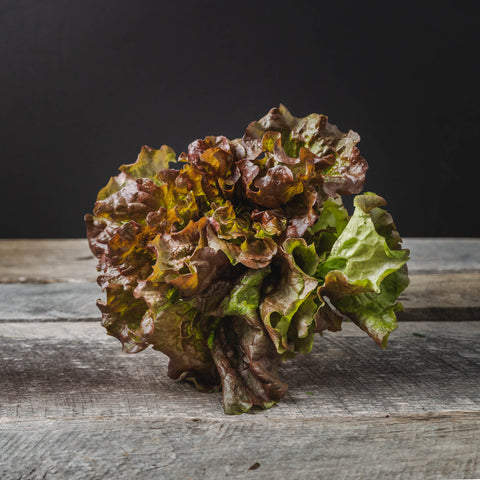 Lettuce - Red Leaf (head)