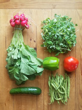 Produce Spring CSA - 10 weeks (March 20 - May 22)