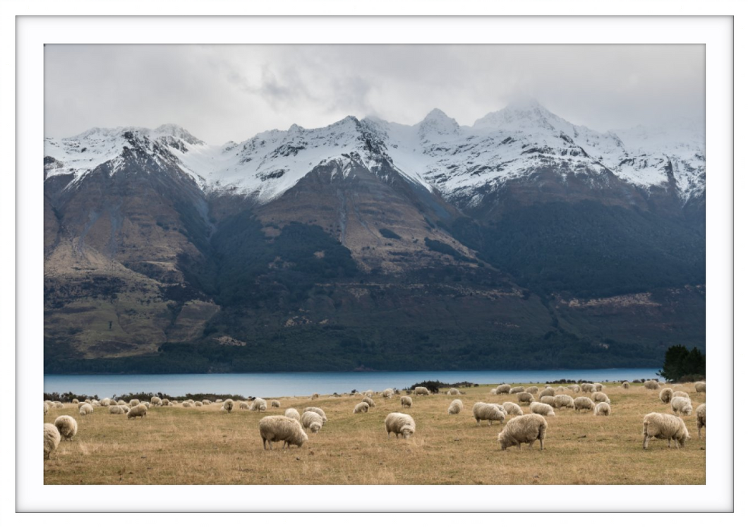 Glenorchy - Jessica Lee Photography