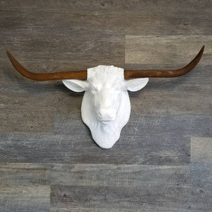 Faux White Texas Longhorn With Rust Horns