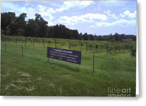 East Texas Vineyard - Greeting Card