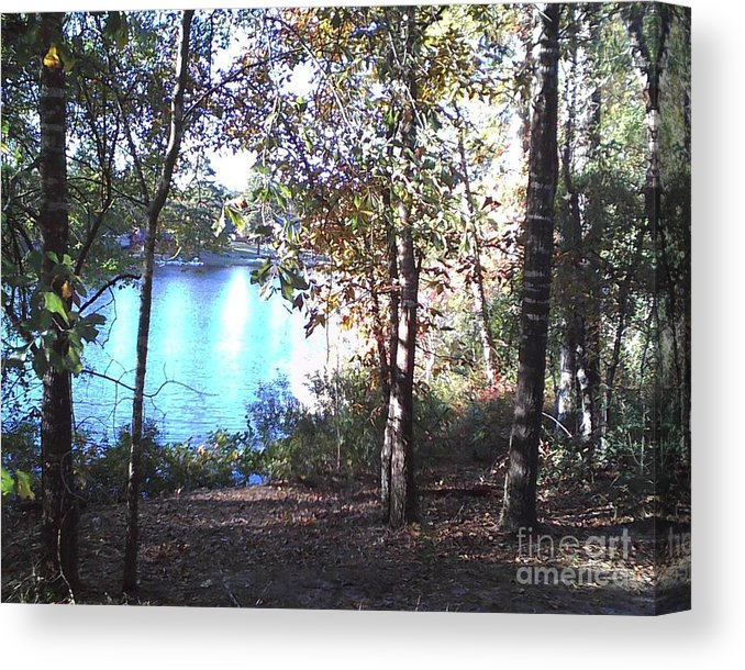 November Day - Canvas Print