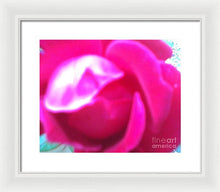 Rose Petals Opening Abstract - Framed Print