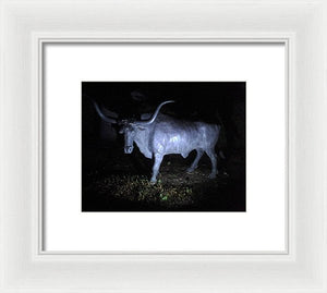 The Texas Longhorn - Framed Print