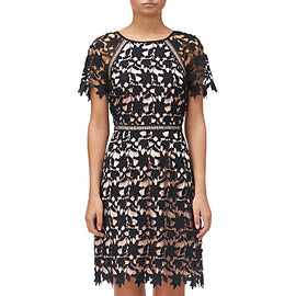 Adrianna Papell Ava Lace Trimmed A-line Dress- Black/Rose Gold