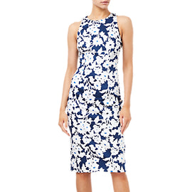 Adrianna Papell Daisy Field Sleeveless Bodycon Dress- Navy/Ivory