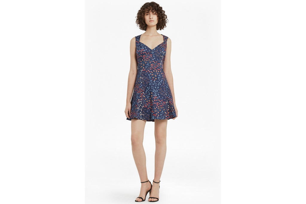 Frances Printed Cotton Skater Dress - russian blue multi