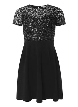 Womens Petite Black Sequin Lace Fit and Flare Dress- Silver