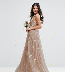 Maya High Neck Maxi Tulle Dress With Tonal Delicate Sequins - Taupe blush
