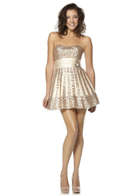 Dynasty Yasmin Champagne Short Skater Dress
