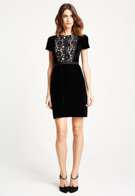 *Available for Pre-Order* LBD Kim Lace and Velvet Mini Dress in Black