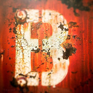 B | Abstract Letter Art - Tracey Capone Photography