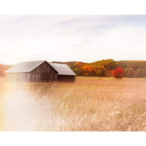 Autumn Color Photography | Traverse City Barn And Field Tracey Capone Photography