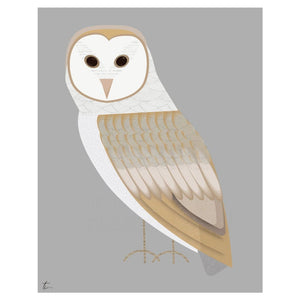 Barn Owl Illustration Bird Wall Art Decor Tracey Capone Photography