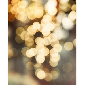 Bokeh No. 2 | Gold & Gray Abstract - Tracey Capone Photography