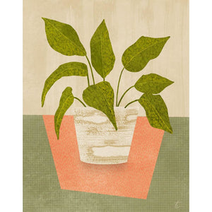 Calathea Plant Illustration // Houseplant Home Decor Tracey Capone Photography