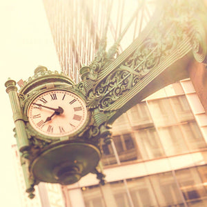 Fields | Clock on State Street-Tracey Capone Photography