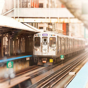 Linden | Purple Line Train in Chicago-Tracey Capone Photography