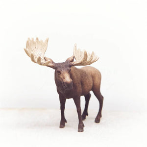 Moose | Nursery Wall Decor-Tracey Capone Photography