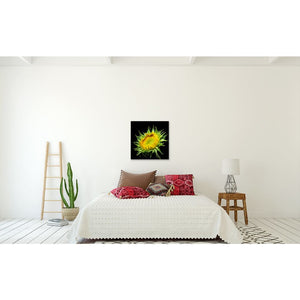 Photograph Of Yellow Sunflower In Partial Bloom | Botanical Wall Decor Tracey Capone Photography