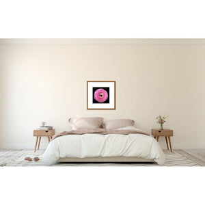 Portrait of a Pink Ranunculus No. 1-Framed Archival Lustre Print-Tracey Capone Photography