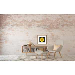 Portrait of a Yellow Sunflower No. 1-Framed Archival Lustre Print-Tracey Capone Photography