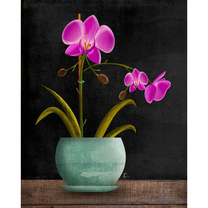 Purple Orchid Illustration | Flower Wall Art | Floral Home Decor