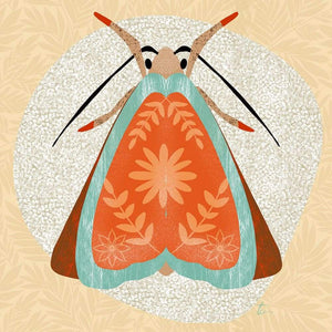 Red and Teal Moth Illustration // Folk Art Inspired Tracey Capone Photography