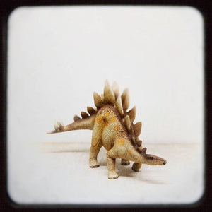 Stegosaurus | Nursery Wall Decor-Tracey Capone Photography