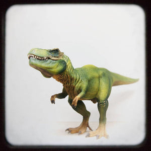 T Rex No. 2 | Kids Room Decor-Tracey Capone Photography