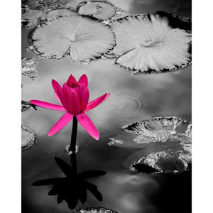 The Extrovert | Purple Lotus Flower-Tracey Capone Photography