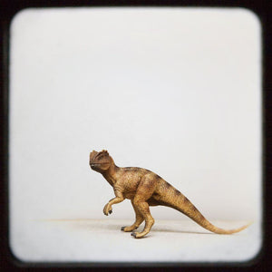 Allosaurus | Toy Dinosaur Photograph - Tracey Capone Photography