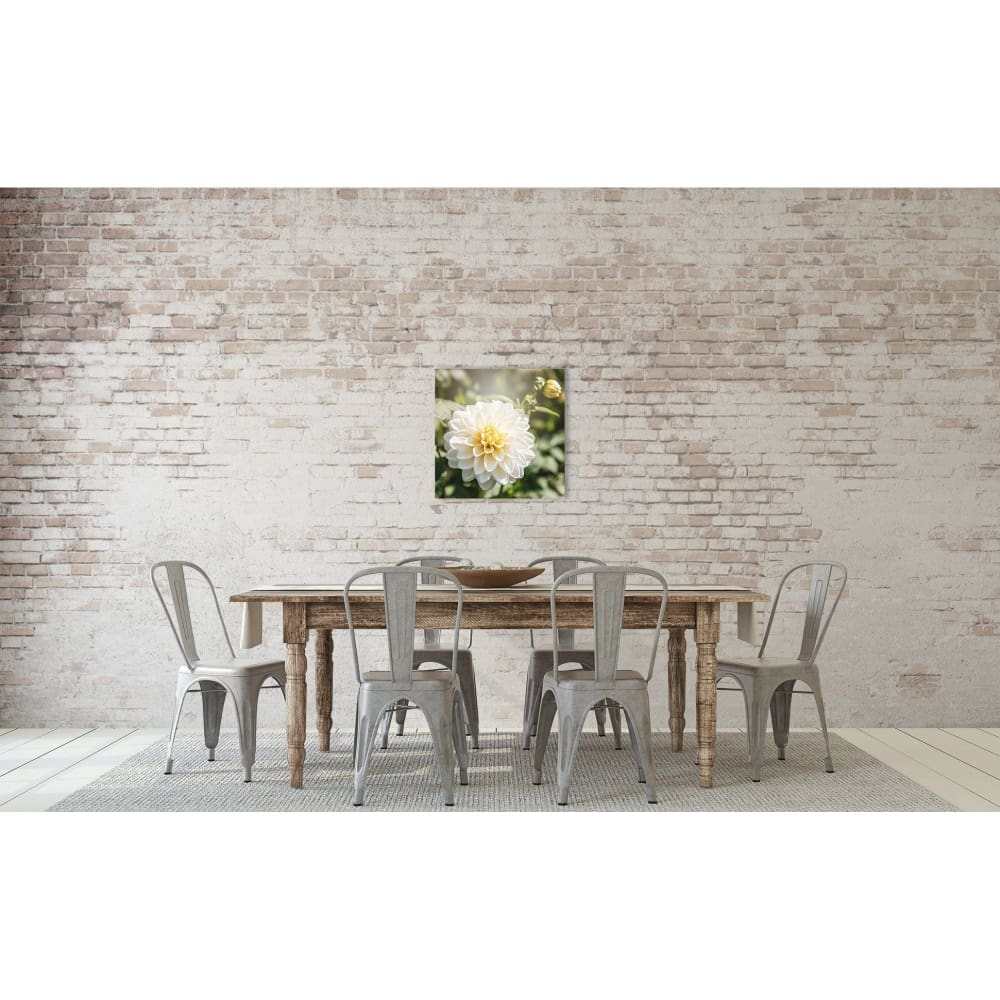 White Dahlia Flower Nature Photography Floral Wall Art Print Tracey Capone Fine Art