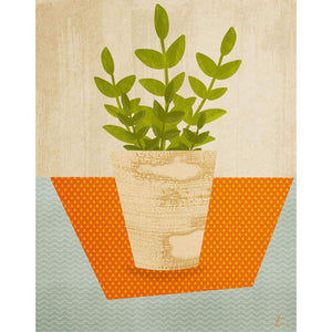 ZZ Plant Illustration // Plant Life Home Decor Tracey Capone Photography