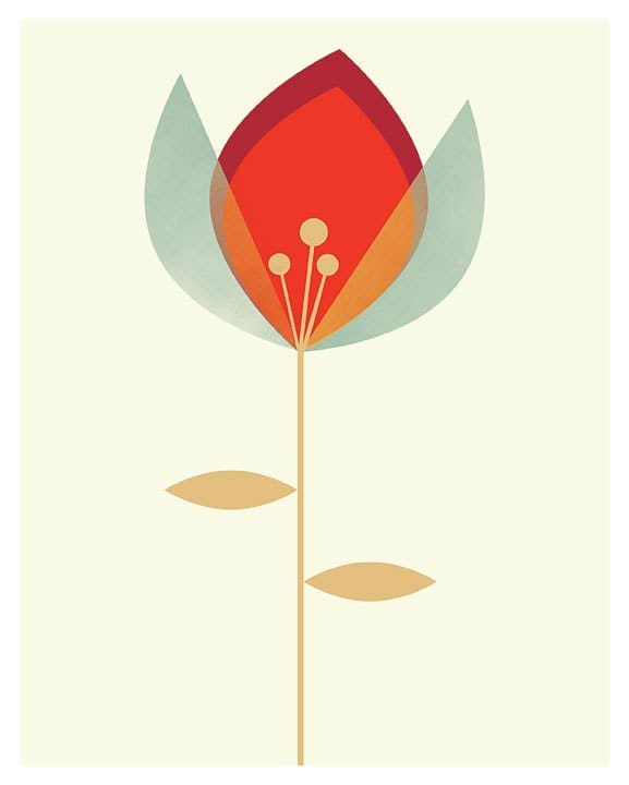 Original illustratino of a blue and red poppy flower by Chicago artist Tracey Capone