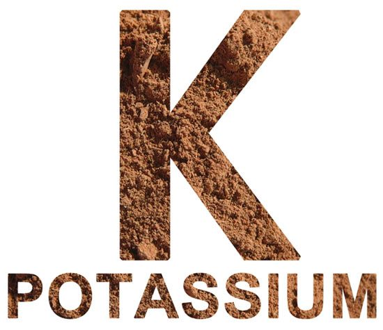 Potassium supplement