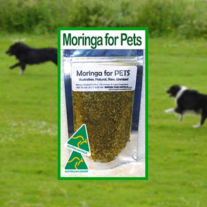 Moringa Nutrients for Pets