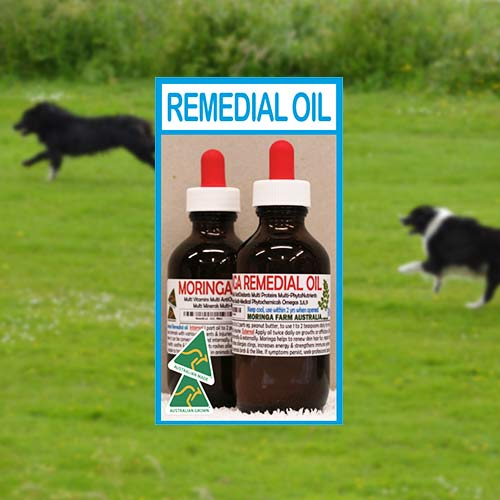 Remedial Oil For Pets - 90ml