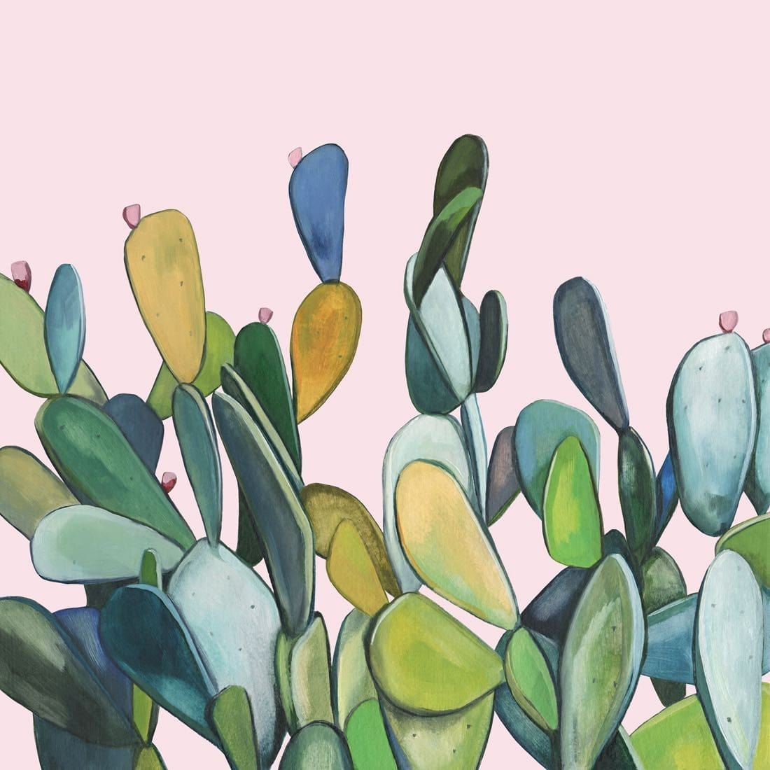 Cactus Sky by Kate Jarman | Shop Prints | Greenhouse Interiors