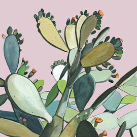 Kate Jarman Maudes Cactus Limited Edition Prints