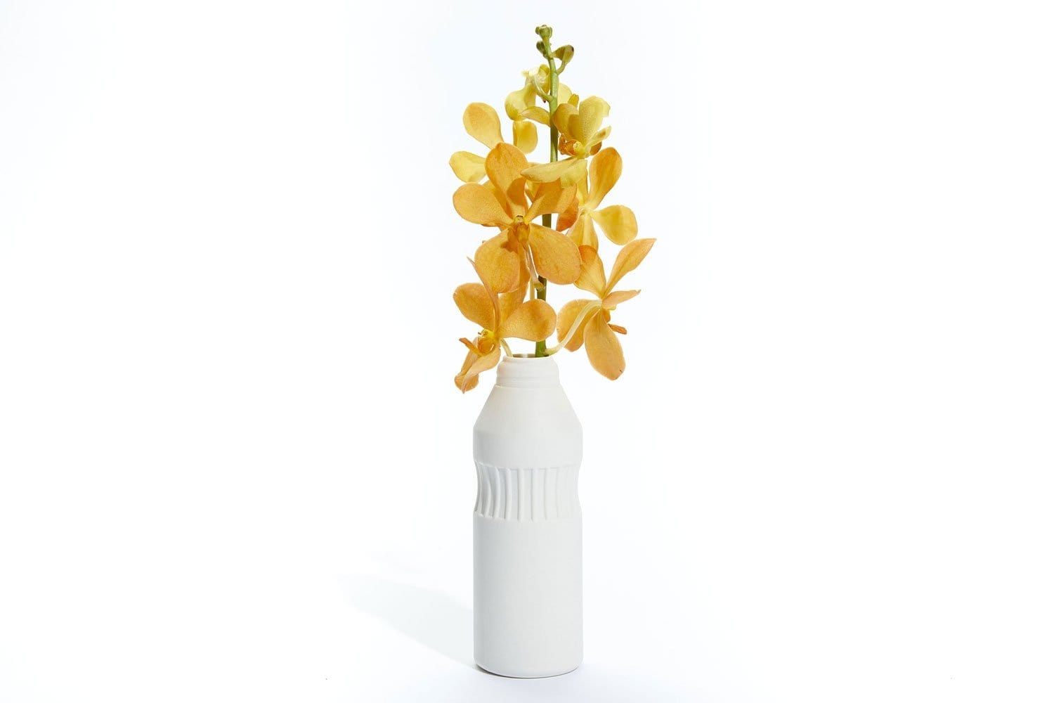 Portico Bottle Vase by Journey of Something | Shop Ceramics | Greenhouse Interiors