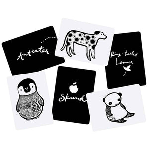 Wee Gallery Baby Art Cards in Black & White