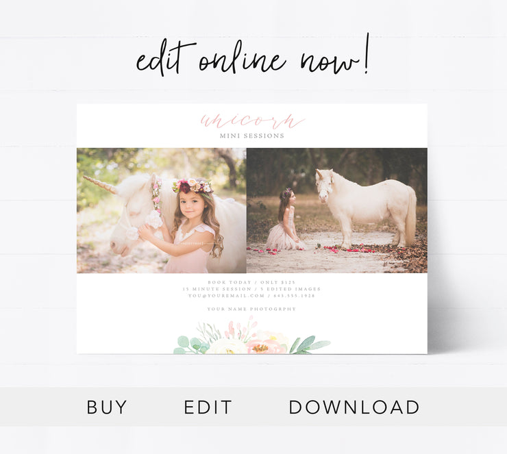 Editable Unicorn Mini Session Template