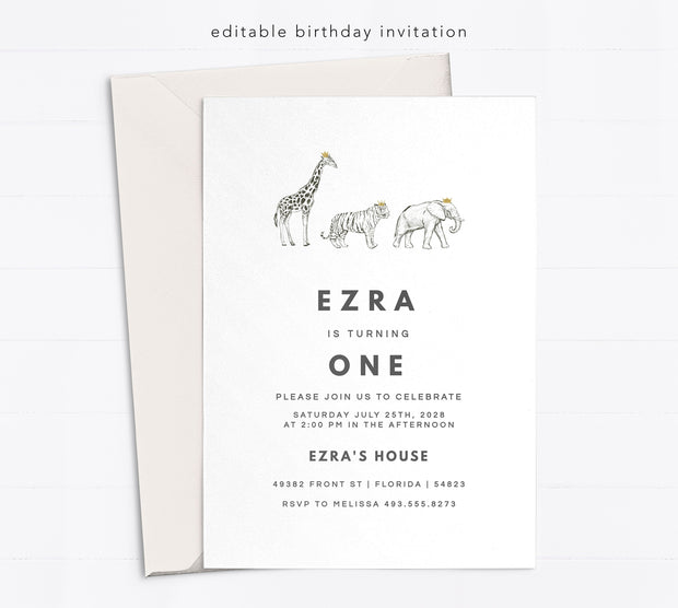 Editable 1st Birthday Invitation