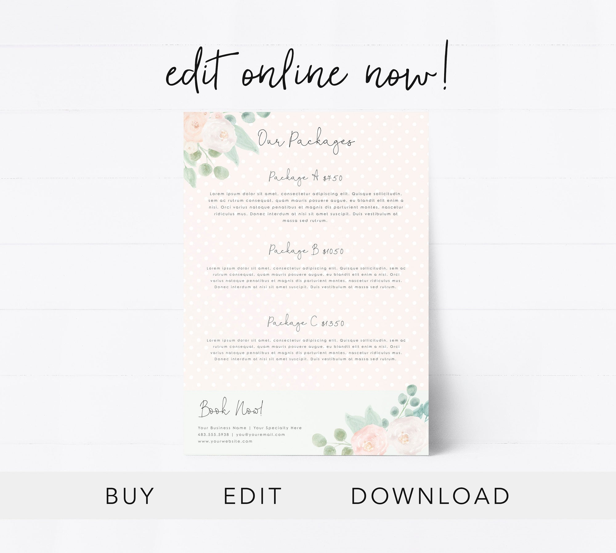 Editable Pricing Guide Template